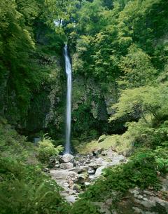 阿弥陀ヶ滝の写真素材 [FYI04020895]