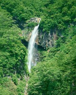 惣滝の写真素材 [FYI04020897]