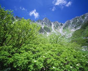 新緑の中央アルプス千畳敷カールと宝剣岳の写真素材 [FYI04021015]