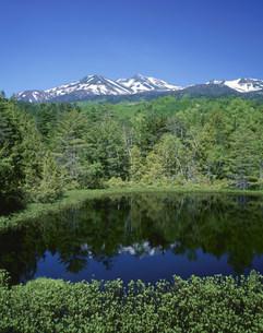 新緑の牛留池と乗鞍岳の写真素材 [FYI04021021]