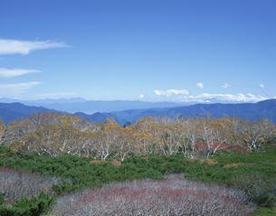 秋の乗鞍岳 9月  長野県の写真素材 [FYI04021065]