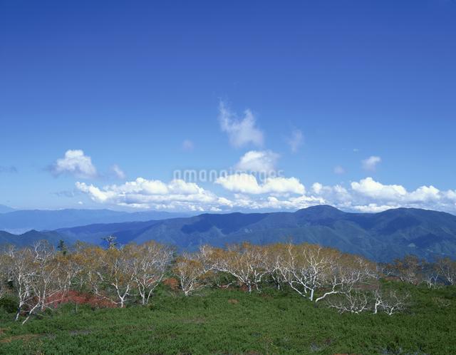 秋の乗鞍岳 9月  長野県の写真素材 [FYI04021066]