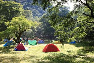 夏の徳沢キャンプ場の写真素材 [FYI04021149]