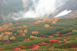 乗鞍岳の紅葉の写真素材 [FYI04021278]