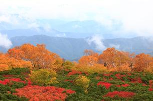 乗鞍岳の紅葉の写真素材 [FYI04021279]