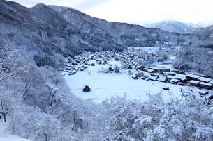 冬の白川郷合掌造り集落の写真素材 [FYI04021409]