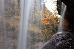 紅葉の雷滝の写真素材 [FYI04021490]
