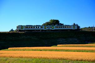 小海線の普通列車の写真素材 [FYI04021844]
