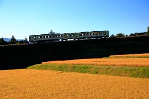 小海線の普通列車の写真素材 [FYI04021852]