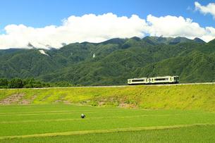 小海線の普通列車の写真素材 [FYI04021869]