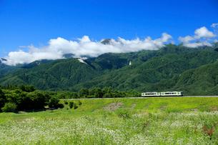 小海線の普通列車と南アルプスの写真素材 [FYI04021877]