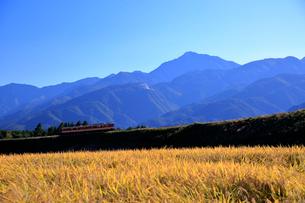 小海線の普通列車と南アルプス甲斐駒ケ岳の写真素材 [FYI04021890]