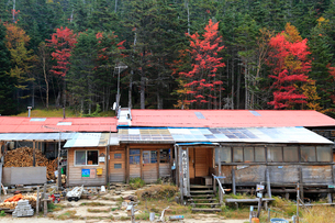 紅葉と南御室小屋の写真素材 [FYI04022196]