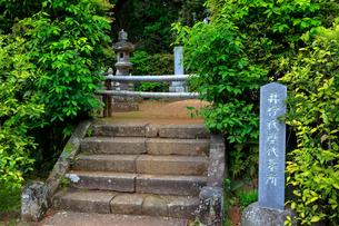 井伊家歴代墓所の写真素材 [FYI04022354]