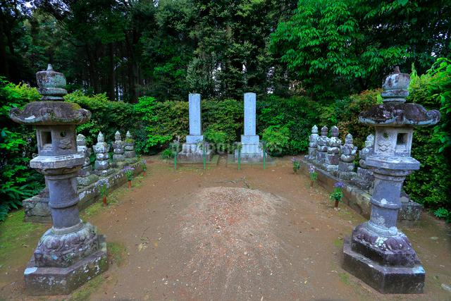 井伊家歴代墓所の写真素材 [FYI04022386]