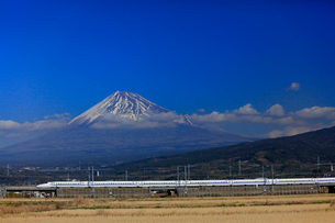 新幹線と富士山の写真素材 [FYI04022560]