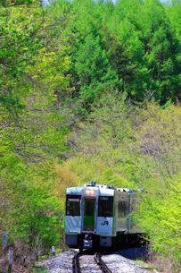 新緑と小海線の列車の写真素材 [FYI04022697]