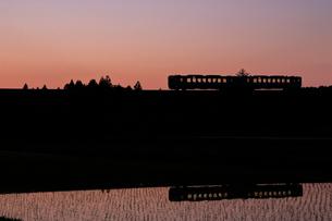 水田と小海線夕景の写真素材 [FYI04022706]