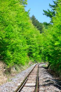 小海線の線路と新緑の写真素材 [FYI04022711]