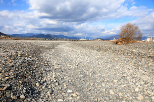 瀬切れして川の表流水が消失した安倍川の写真素材 [FYI04023025]