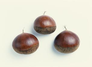 3コの栗の写真素材 [FYI04023394]