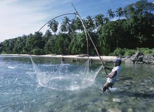 網で小魚を取るの写真素材 [FYI04023465]
