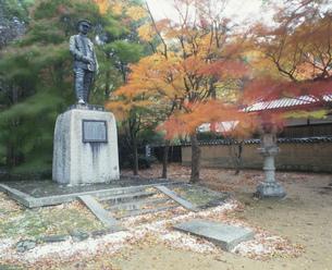 秋の覚恩寺の写真素材 [FYI04023744]
