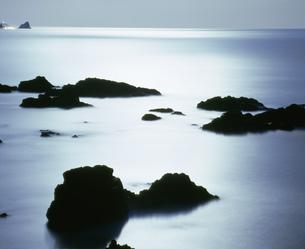 月光の海の写真素材 [FYI04023757]