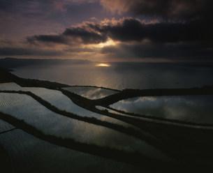 棚田の夕景の写真素材 [FYI04023770]