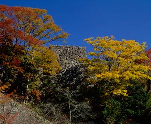 秋の岡城跡の写真素材 [FYI04023793]