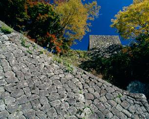 秋の岡城跡の写真素材 [FYI04023794]