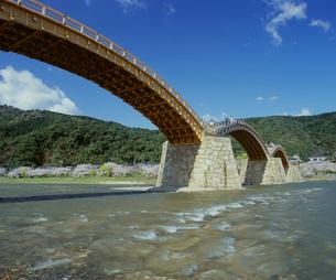 錦帯橋と桜の写真素材 [FYI04023812]