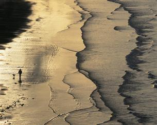 夕照の海 2月   山口県の写真素材 [FYI04023817]
