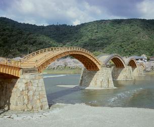 錦帯橋と桜の写真素材 [FYI04023818]
