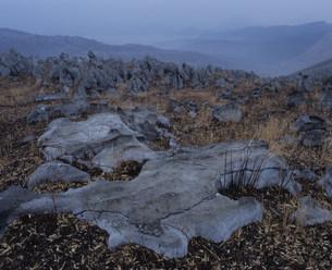 山焼き後の秋吉台の写真素材 [FYI04023826]