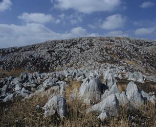 山焼き後の秋吉台の写真素材 [FYI04023832]