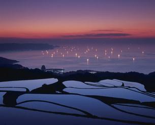 棚田と漁火の写真素材 [FYI04023847]