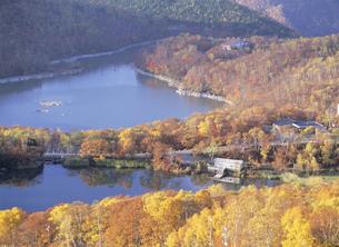 志賀高原 秋の琵琶池と丸池の写真素材 [FYI04025918]