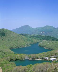 新緑の志賀高原琵琶池と丸池の写真素材 [FYI04025982]