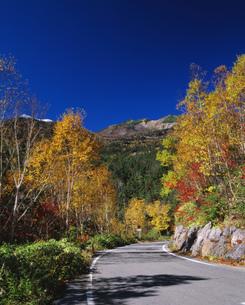 紅葉のエコーラインと乗鞍岳の写真素材 [FYI04025983]