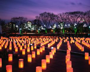 東京ライトピア アンビエントキャンドルパークの写真素材 [FYI04026097]