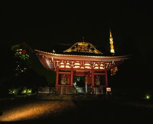 旧台徳院廟惣門のライトアップの写真素材 [FYI04026101]