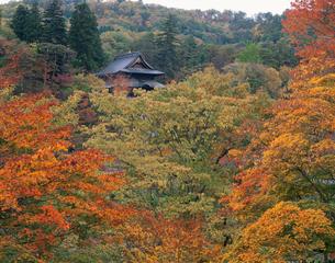虚空蔵尊円蔵寺の紅葉の写真素材 [FYI04026103]