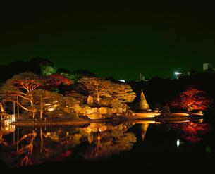 紅葉の六義園ライトアップの写真素材 [FYI04026110]