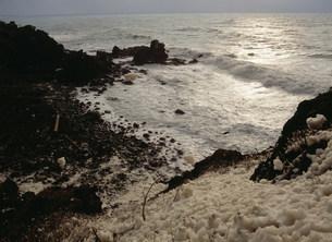 冬の日本海 波の花の写真素材 [FYI04026129]