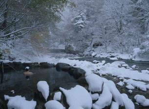 秋の宮温泉郷 冬の鷹の湯温泉の写真素材 [FYI04026373]