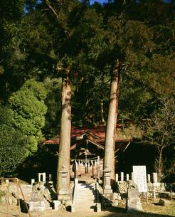 梅園神社の写真素材 [FYI04026515]
