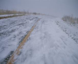 地吹雪の道の写真素材 [FYI04026559]