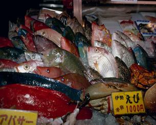 牧志公設市場の魚屋さんの写真素材 [FYI04026599]