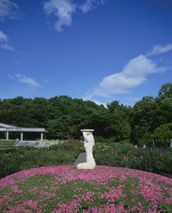 神代植物園の写真素材 [FYI04026651]